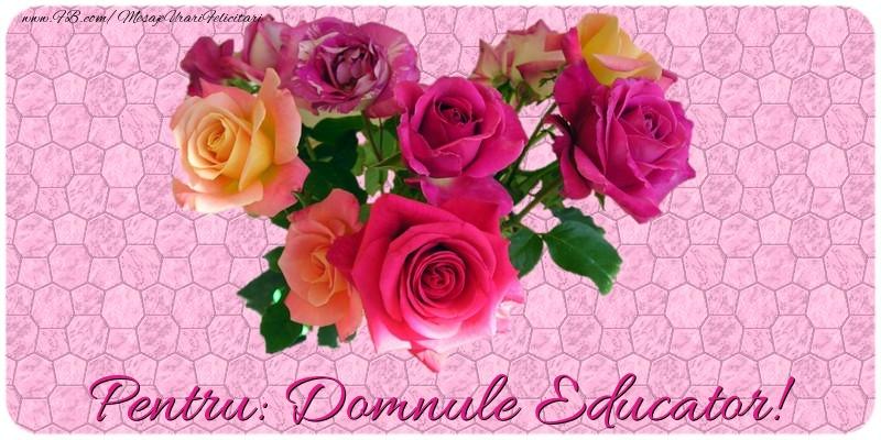 Felicitari de prietenie pentru Educator - Pentru domnule educator