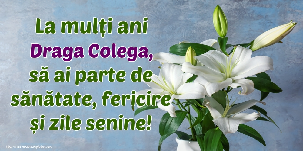 Felicitari de zi de nastere pentru Colega - La mulți ani draga colega, să ai parte de sănătate, fericire și zile senine!