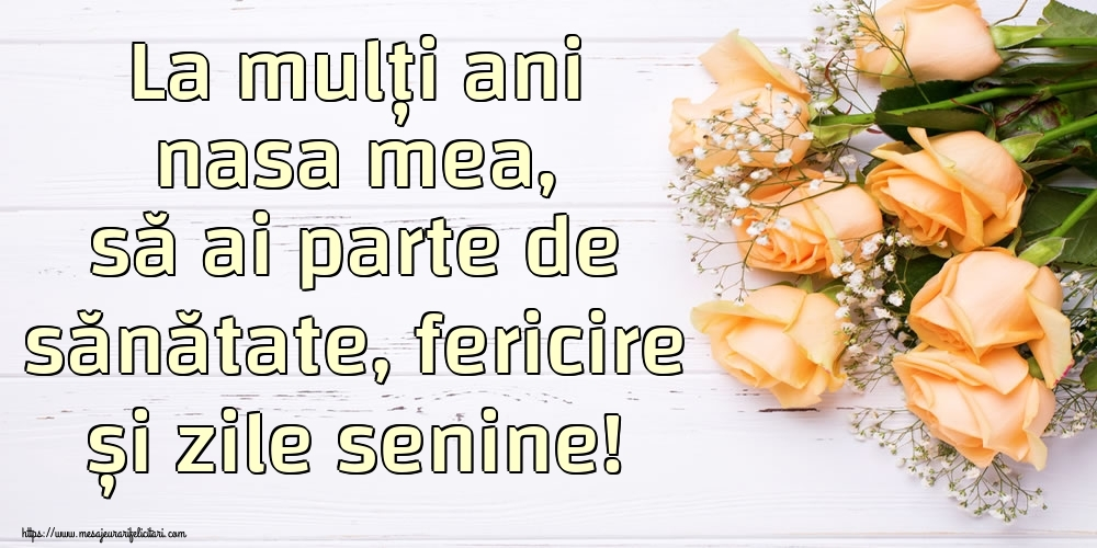 Felicitari de zi de nastere pentru Nasa - La mulți ani nasa mea, să ai parte de sănătate, fericire și zile senine!