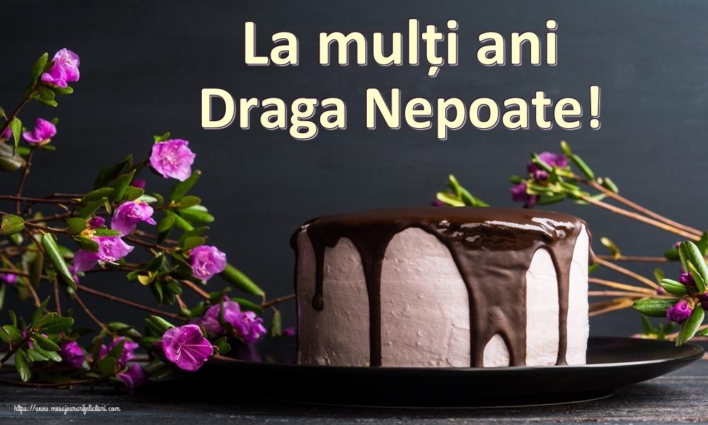 Felicitari de zi de nastere pentru Nepot - La mulți ani draga nepoate!