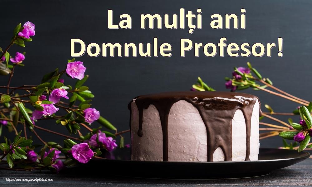 Felicitari de zi de nastere pentru Profesor - La mulți ani domnule profesor!