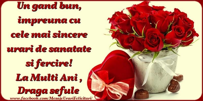 Felicitari de zi de nastere pentru Sef - Un gand bun, impreuna cu cele mai sincere urari de sanatate si fercire! La multi ani, draga sefule