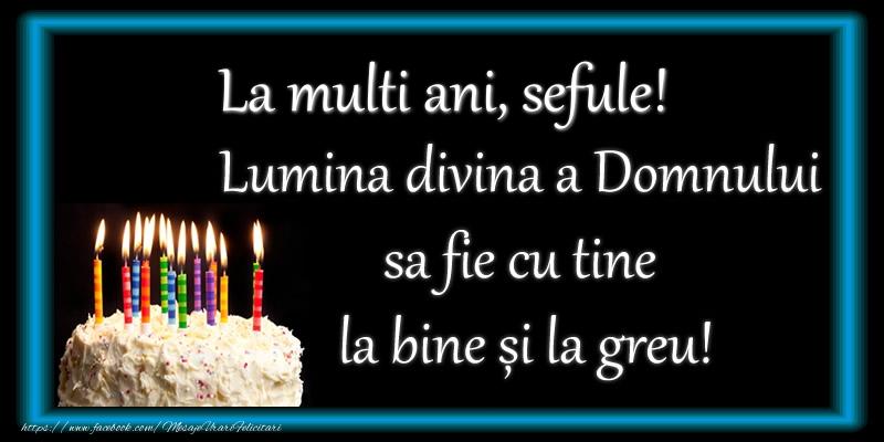 Felicitari de zi de nastere pentru Sef - La multi ani, sefule! Lumina divina a Domnului sa fie cu tine la bine și la greu!