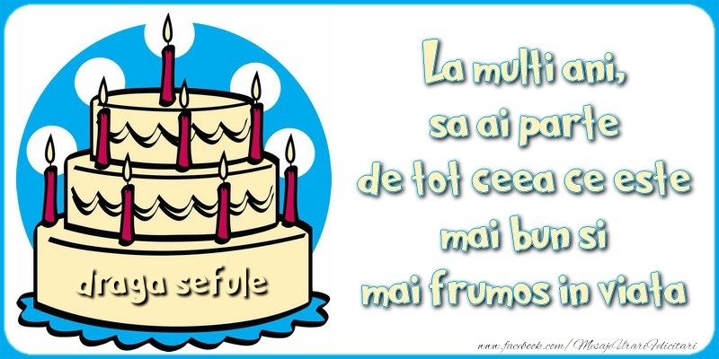 Felicitari de zi de nastere pentru Sef - La multi ani, sa ai parte de tot ceea ce este mai bun si mai frumos in viata, draga sefule
