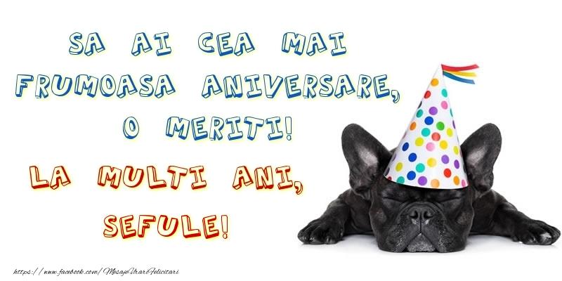 Felicitari de zi de nastere pentru Sef - Sa ai cea mai frumoasa aniversare, o meriti!La multi ani, sefule!