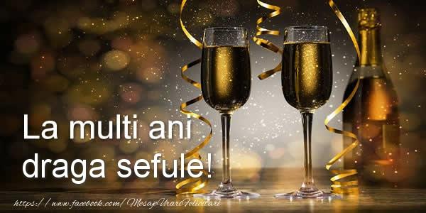 Felicitari de zi de nastere pentru Sef - La multi ani draga sefule!
