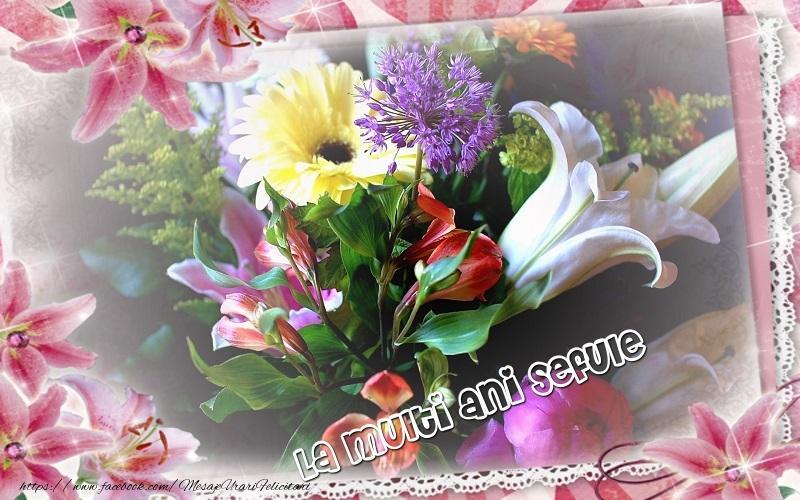 Felicitari de zi de nastere pentru Sef - La multi ani sefule