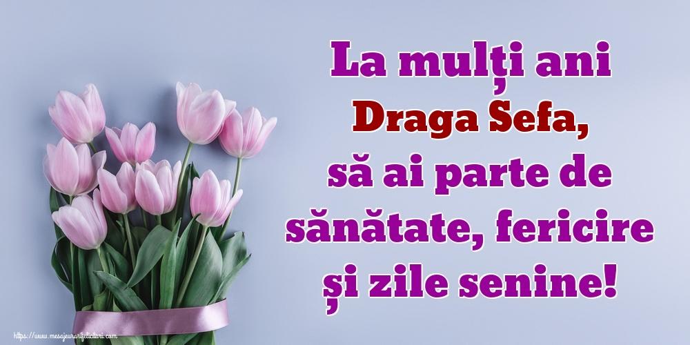 Felicitari de zi de nastere pentru Sefa - La mulți ani draga sefa, să ai parte de sănătate, fericire și zile senine!