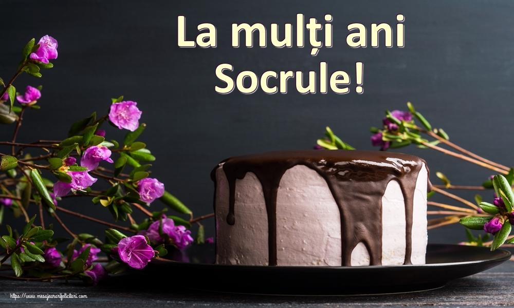 Felicitari de zi de nastere pentru Socru - La mulți ani socrule!