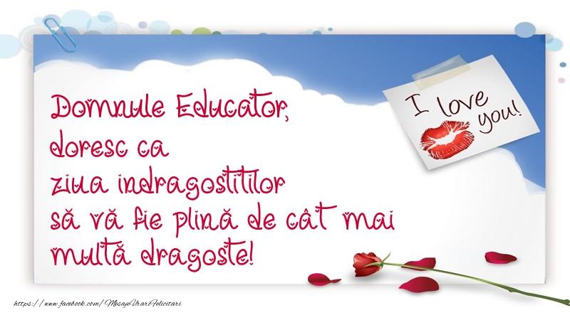 Felicitari Ziua indragostitilor pentru Educator - Domnule educator, doresc ca ziua indragostitilor să vă fie plină de cât mai multă dragoste!