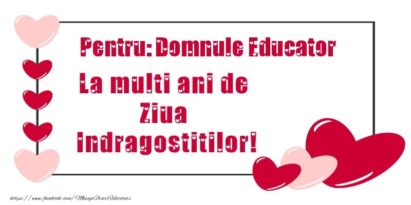 Felicitari Ziua indragostitilor pentru Educator - Pentru: domnule educator La multi ani de Ziua Indragostitilor!