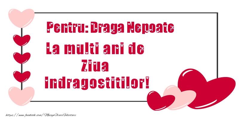 Felicitari Ziua indragostitilor pentru Nepot - Pentru: draga nepoate La multi ani de Ziua Indragostitilor!