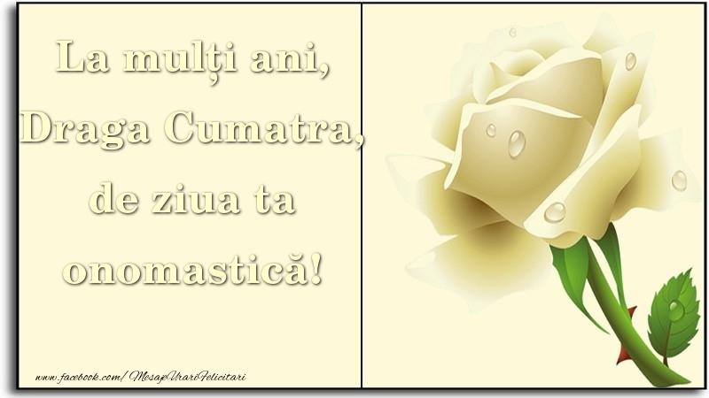 Felicitari de Ziua Numelui pentru Cumatra - La mulți ani, de ziua ta onomastică! draga cumatra