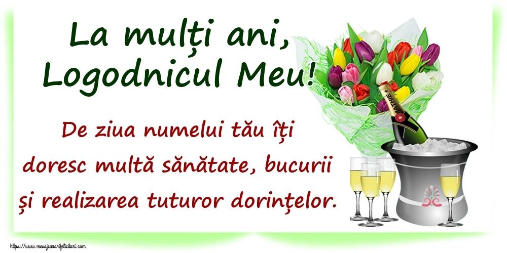 Felicitari de Ziua Numelui pentru Logodnic - La mulți ani, logodnicul meu! De ziua numelui tău îți doresc multă sănătate, bucurii și realizarea tuturor dorințelor.