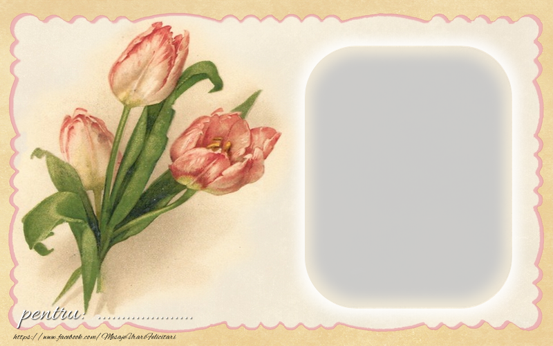 Felicitari personalizate Diverse - Flori pentru ...