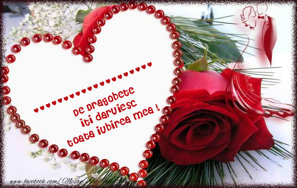 Felicitari personalizate de Dragobete - ... de ziua Indragostitilor  iti daruiesc  toata iubirea mea !
