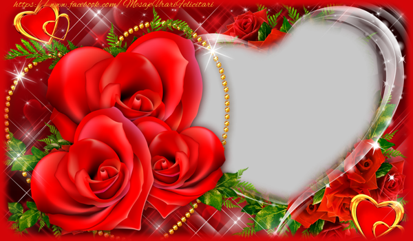 Felicitari personalizate de dragoste - Te iubesc
