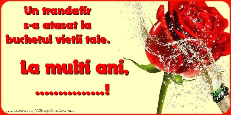Felicitari personalizate de la multi ani - Un trandafir s-a atasat la buchetul vietii tale. ...