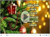 Sarbatorile Craciunului si Anului Nou sa va aduca ...