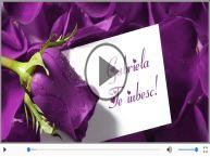 I love you Gabriela! - Felicitare muzicala