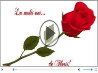 Felicitare muzicala pentru toti cei care poarta nume de flori