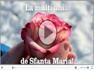 Felicitare muzicala si animata de Sfanta Maria