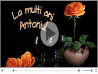 17 Ianuarie - Sfantul Antonie - La multi ani Antonia si Anton!