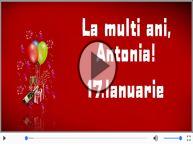 De Sfantul Antonie cel Mare, La multi ani sarbatoritilor!
