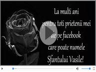 La multi ani cu sanatate de Sfantul Vasile!