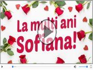 Felicitare muzicală de Sfânta Sofia