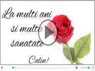 Cantec de la multi ani pentru Calin!