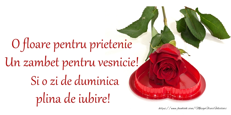 O floare pentru prietenie Un zambet pentru vesnicie! Si o zi de duminica plina de iubire!