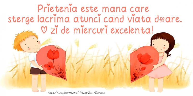 Prietenia este mana care sterge lacrima atunci cand viata doare. O zi de miercuri excelenta!